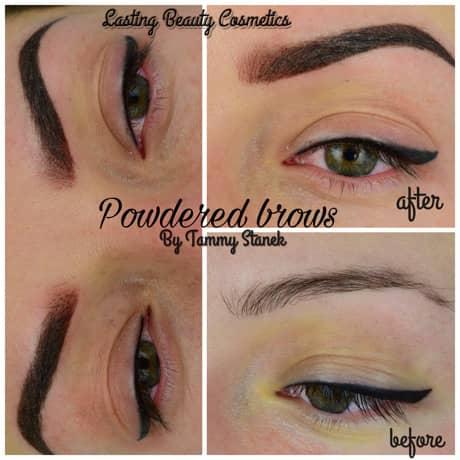 powder brows price madison